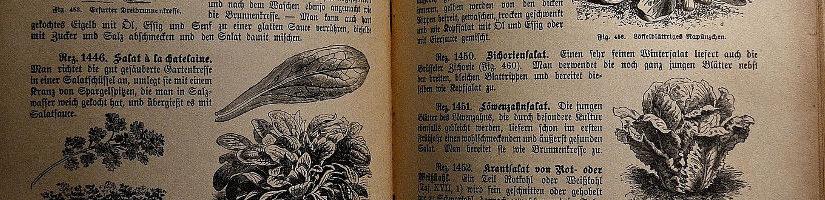 15 | Essen und Nerds